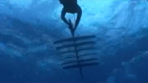 Wave Glider von Liquid Robotics