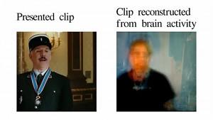 Videobild aus Gehirnaktivität rekonstruiert