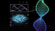 Archon Genomics X Prize