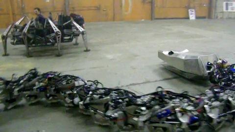 Roboterschlange Titanoboa