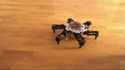Roboter Morphex - Frühstadium