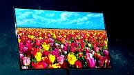 Samsung stellt Super-OLED-TV vor (CES 2012)
