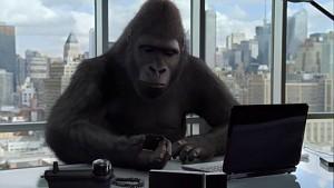 Corning - Gorilla-Glas im Alltag