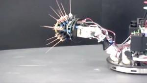 Shrewbot - Roboter mit Tastsinn