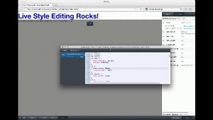Firefox Aurora 13 Style Editor