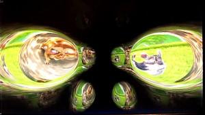 Livecoding - Videoeffekte mit Qt5