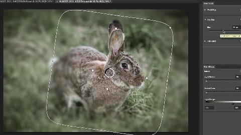 Teilbereiche weichzeichnen in Adobe Photoshop CS6