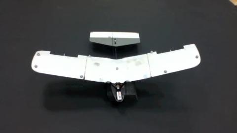 Flugroboter der Universität von Illinois