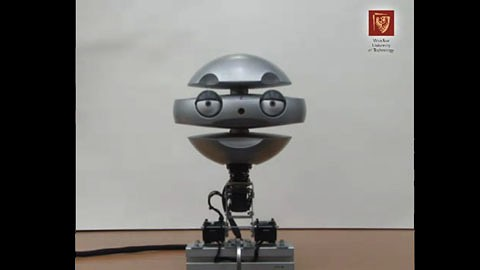 Emys - Roboter mit Mimik