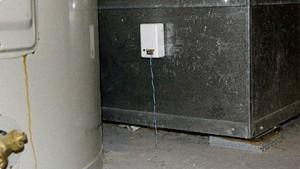 Knut - vielseitiger Sensor mit WLAN und Akkubetrieb