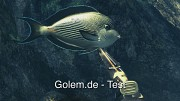 Depth Hunter - Der Speerfischen-Simulator - Test