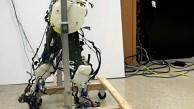 Biologisch korrekt laufende Roboterbeine