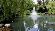 Aufnahme mit der Pentax K01 (Video Andreas Donath)