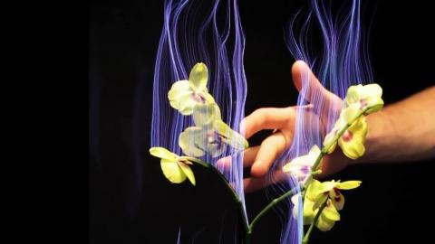 Botanicus Interacticus - Trailer (Siggraph 2012)