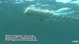 Tauchroboter Mola