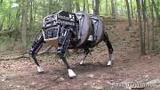 Alpha Dog - Boston Dynamics