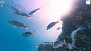 Street View unter Wasser