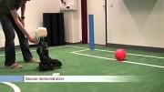 Roboter Nimbro-OP