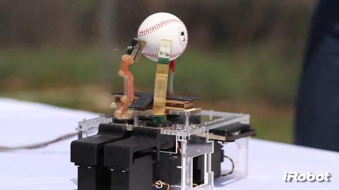 Roboterhand - iRobot
