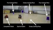 Roboter täuscht Roboter