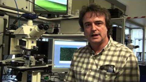 Fälschungssichere Nano-Markierungen von IBM
